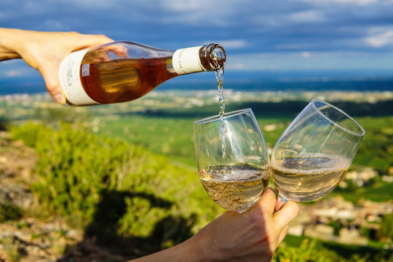 vinos marketing bodega vineria bodega mendoza marketing digital especializado.jpg